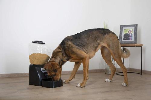 Eyenimal Ngdiscro003electronic Pet Feeder