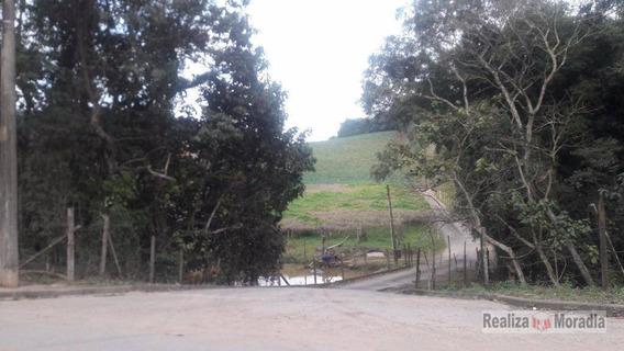 Terreno Industrial 30.000 M², Jardim Da Glória, Granja Viana, Cotia. - Te0071