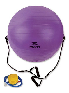 Bola Pilates Aerobica Fitness 65cm Com Extensores Yoga Bomba