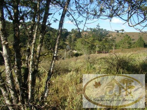 Terreno Para Venda Em Campos Do Jordão, Jardim Lenisse Cataguases - 22_2-447459
