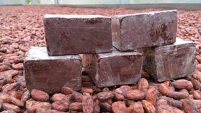 Chocolate Artesanal Cacao 100% Organico Fino Y De Aroma X Kg
