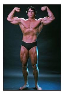 Quadro Arnold Schwarzenegger No Mercado Livre Brasil