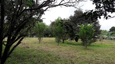 Terreno, 1.950 M/2. Land, 1,950 Sq.m. (titulado) 20.000 Usd.
