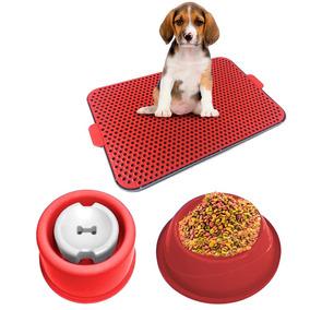 Kit Dog Xixi Dog Bebedouro Pelo Longo Comedouro Vermelho