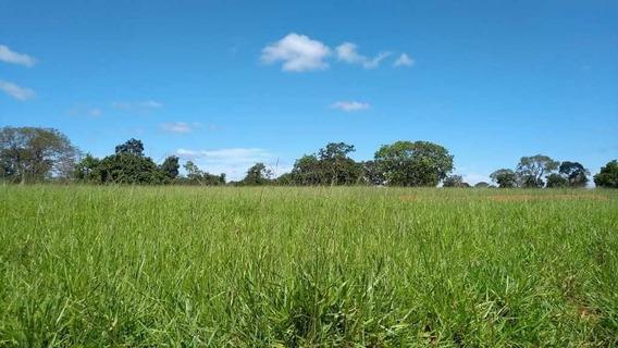 Fazenda Curvelo Mg 100% Formada Pastagem - 1397