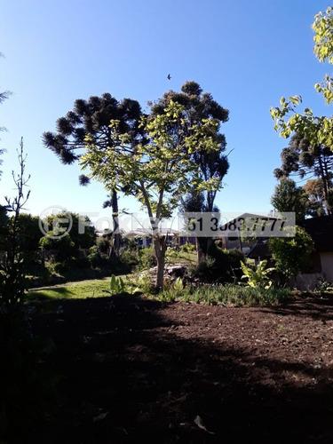 Imagem 1 de 7 de Fazenda / Sítio / Chácara, 3 Dormitórios, 300 M², Bairro Do Moinho - 202976