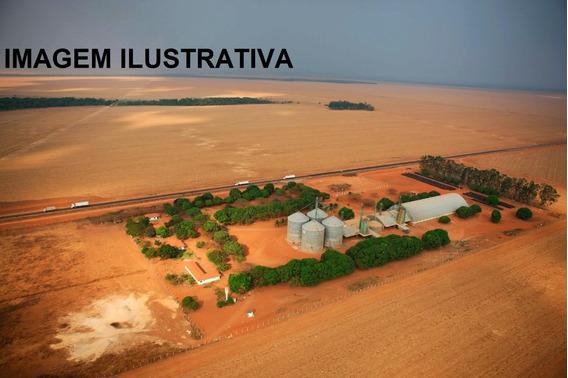Fazenda Agricultura Para Venda Ou Arrendamento Em Paranating