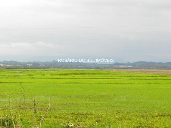 Fazenda Com 50 Ha Em Formigueiro - Rs