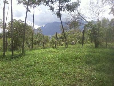Terreno / Área Para Comprar No Zona Rural Em Catas Altas/mg - 2234