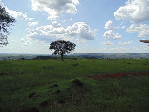 Fazenda Amanhece Araguari Minas Gerais