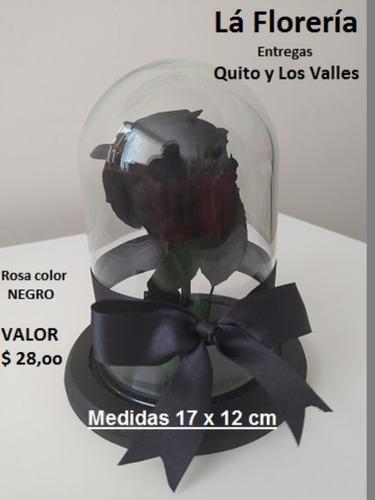 Rosa Eterna Natural Color Negro En Urna De Vidrio