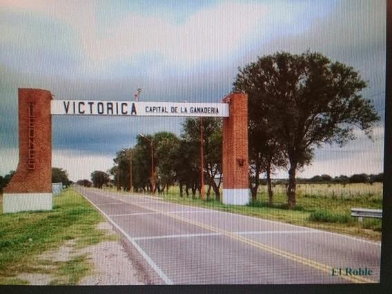 Venta De Locales. Oportunidad Unica!!!
