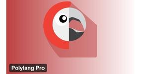 Polyang Pro Plugin Multilingue - Plugin Wordpress