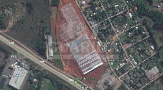 Pavilhão Para Aluguel, Bom Sucesso - Gravataí/rs - 966