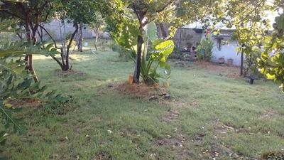 Terreno 912mts Bardeado Con Casa Alpuyeca Morelos