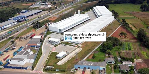 Imagem 1 de 9 de Galpão Para Locação Em Goiânia - 4636goi_2-1039968