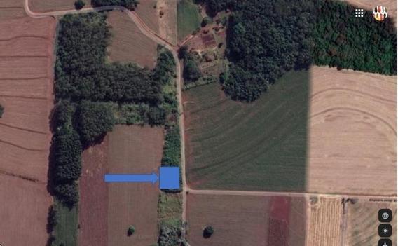 Chácara Em Gleba Fazenda Palhano, Londrina/pr De 0m² À Venda Por R$ 180.000,00 - Ch492465