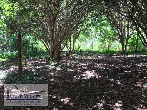 Imagem 1 de 5 de Terreno Em Centro  -  Paty Do Alferes - 3261
