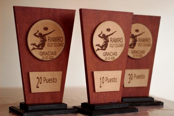Terna De Trofeos Y Placas Grabadas