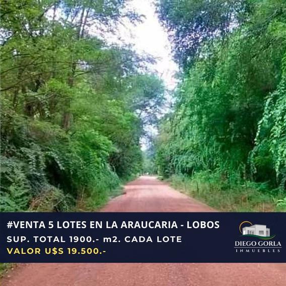Venta 5 Lotes - La Araucaria - Salvador Maria - Lobos
