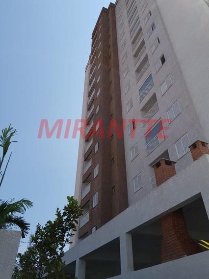 Apartamento Em Tucuruvi - São Paulo, Sp - 310523