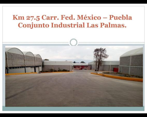 18 Bodegas Industriales Plaza Palmas Ayotla Edo. De México