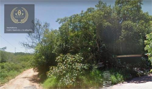 Imagem 1 de 7 de Terreno À Venda, 987 M² Por R$ 102.000 - Tarumã - Viamão/rs - Te0161