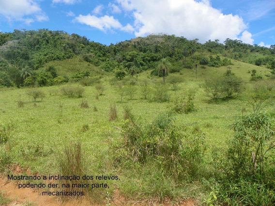 Fazenda Em Carmésia, Banhada Pelo Rio Do Peixe