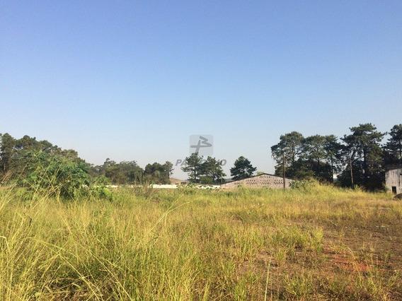 Terreno Industrial - Sertaozinho - Ref: 705 - L-705