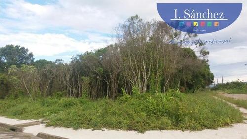Imagem 1 de 3 de Terreno Em Praia Para Venda Em Itanhaém, Jardim Das Palmeiras Ii - 170216_1-756854