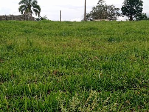 Imagem 1 de 4 de Sítio 5,7 Alqueires Frente Asfalto,localização Top,terra Fertil,muito Boa,ótimo Para Plantação,gado,granjas - Ar00014 - 69179725