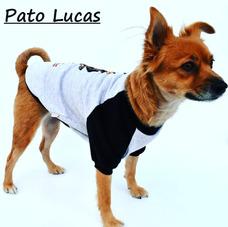 Luce Mi Ropa - Animales y Mascotas en Mercado Libre Argentina 57f97b25615