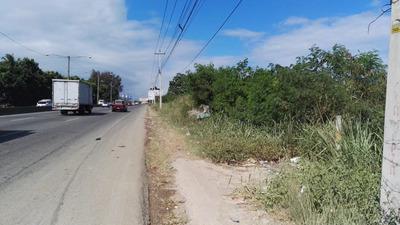 Lotes De 2 Mil Mt, Duarte Km 19 Frente A Ole