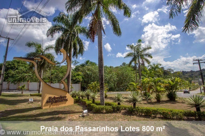 Condomínio Praia Dos Passarinhos, Lote A Venda, Lote 800 M², Ponta Negra, Manaus / Am. - Te00142 - 32402501
