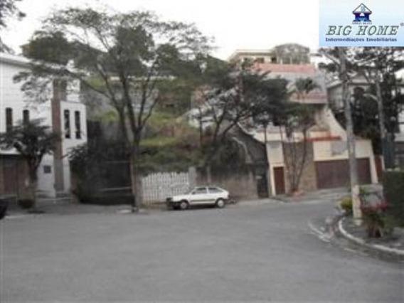 Terreno Residencial À Venda, Jardim Virginia Bianca, São Paulo - Te0097. - Te0097 - 33598264