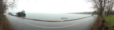 Parcela Frente Lago Puyehue, Sector Mantilhue