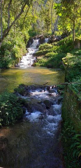 Fazenda À Venda Rica Em Água Com Cachoeira 320 Alqueires