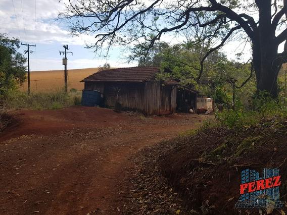 Chácaras_sítios_fazendas Para Venda - 13650.4189