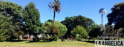 Alojamiento Y Turismo Rural