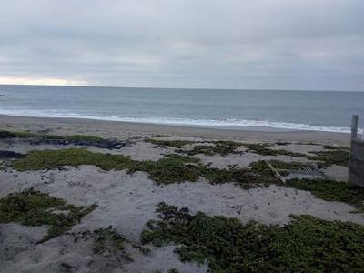 Venta De Terreno Frente Al Mar Playa Zorritos - Tumbes