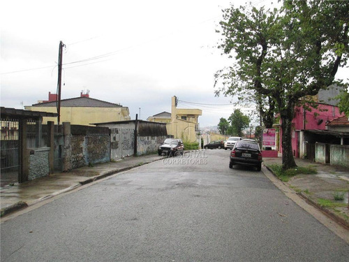 Terreno Residencial À Venda, Vila Eldízia, Santo André - Te0128. - Te0128