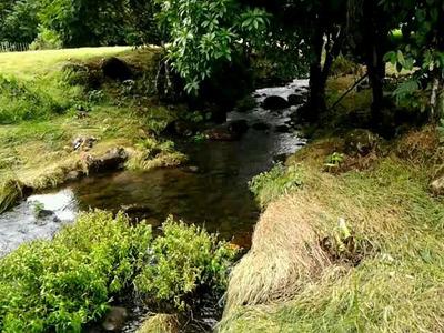 Linda Terreno Tipo Quinta. Río Danta Guapiles