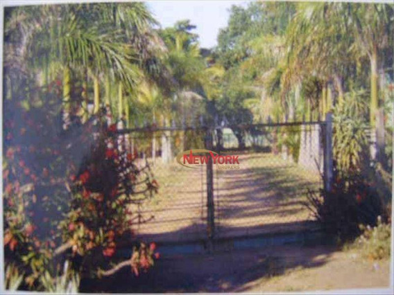Sítio Rural À Venda, Área Rural De São Carlos, São Carlos - Si0020. - Si0020