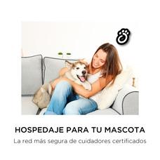 Kmimos - Nueva Forma De Hospedaje Y Cuidados A Mascotas