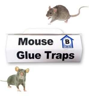 Trampa Rata Ratones Pegamento Glue Extra Fuerte Pack 1un