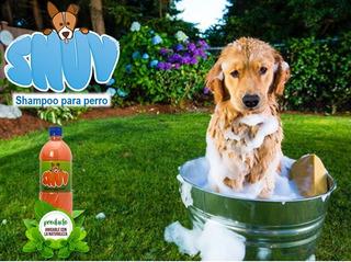 Caja Shampoo Para Perro (4 Litros)