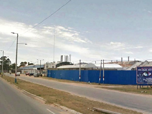 Planta Industrial Barra De Carrasco Ref. 6479