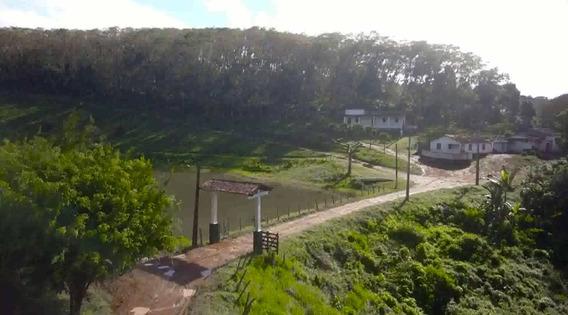 Fazenda De Cacau, Látex E Mogno No Brasil - Cidade Ituberá-ba - 7654