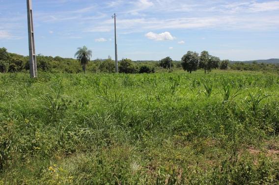 Fazenda Para Venda Em Bodoquena, Zona Rural - 1101