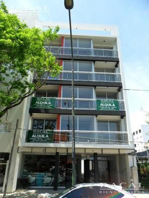 Departamento En Alquiler En La Plata Calle 44 E/ 23 Y 24 Dacal Bienes Raices